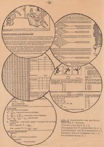 1979 Biomathematics script / Skriptum Biomathematik