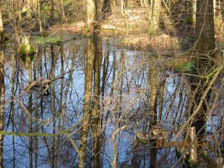2916 Eppendorfer Moor