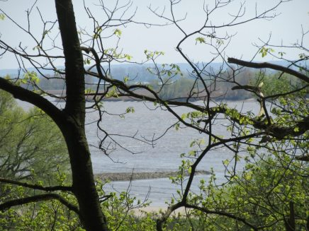 Elbe outlook from high route
