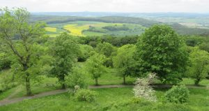 2016_05_20 Landkreis Marburg-Biedenkopf: vom Frauenberg Richtung Amöneburg