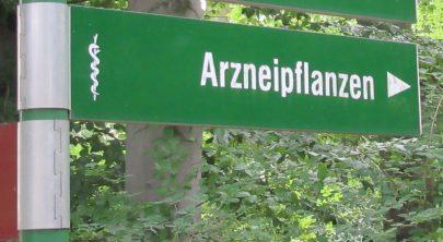 2016_08_15 Berlin, Botanischer Garten