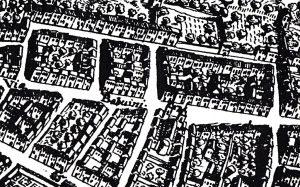 meyer-1677-detail