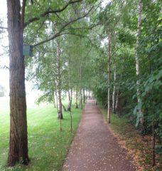 2014_07_14 Berlin, Garten der Villa Liebermann am Wannsee