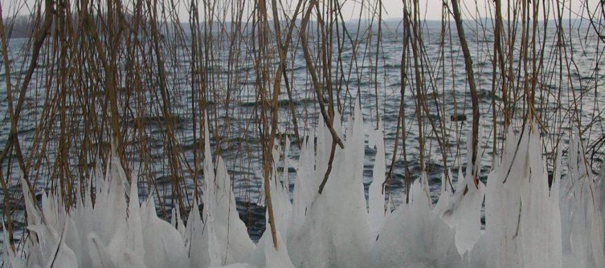 2011_02_26 Plöner See