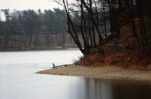 1988_11_17 Concord (MA): Walden Pond