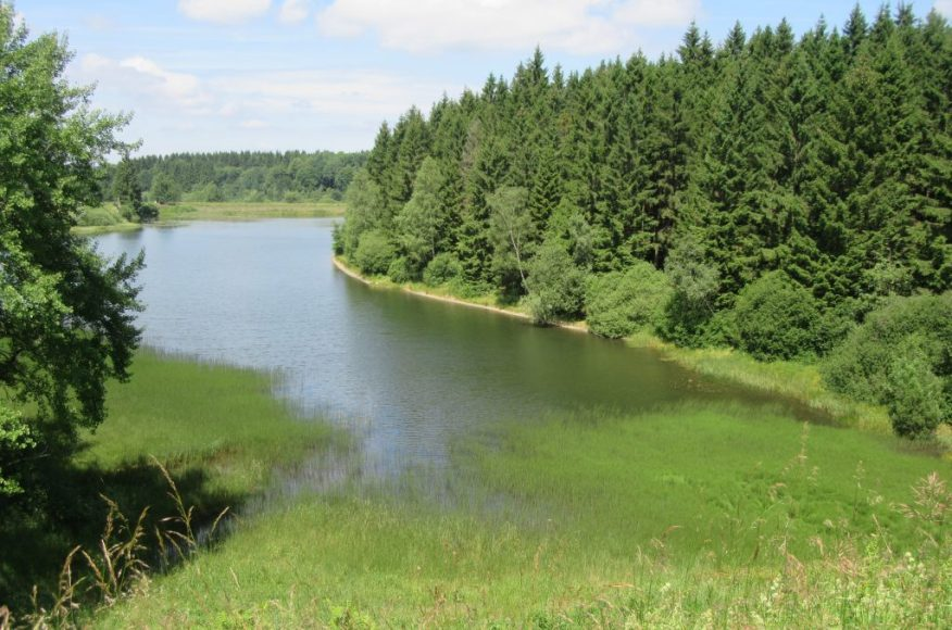 2017_07_08 Zellerfeld (Harz): Teiche der Wasserkunst