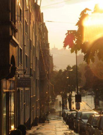 Friedrich-Ebert-Straße, mit Wilhelmshöhe