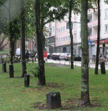"""Joseph Beuys: Projekt """"7000 Eichen"""", hier: Kaiserlinden"""