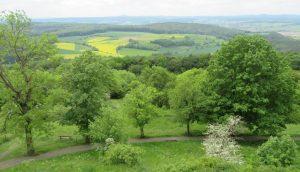 2016_05_20 Vom Frauenberg b. Marburg IMG_5253a