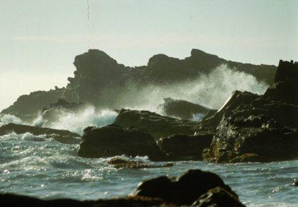 Calif coast