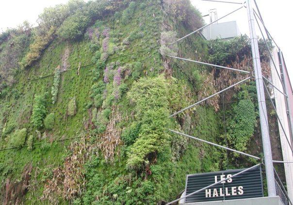 2010 Avignon: Vertical green