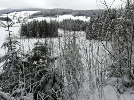 2018_02_18 Schwarzwald