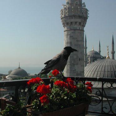 2008 Istanbul