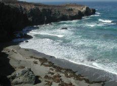 2008 Northern Calif. coast