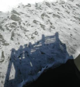 2008_09 Northern Calif. coast