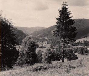 1955 Harz. Foto: privat