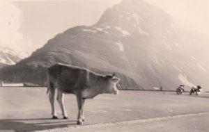 1961 Nr05a Silvretta