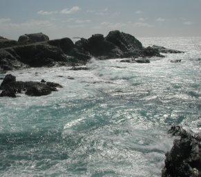 2006_03_10 Insel Gaou