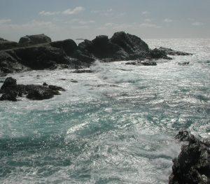 2006_03_10 Insel Gaou (F)