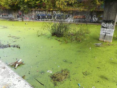 2018_10_03 Hamburg: Gewässer unter der Diebsteichbrücke