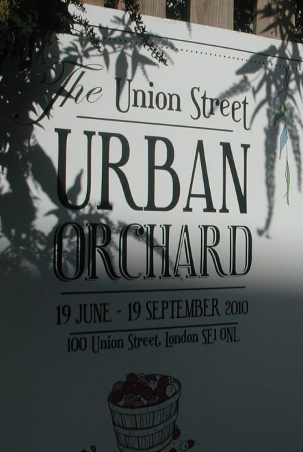 2010_10_23 London, 100 Union Street: Urban Orchard proj