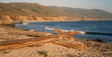 1985_08_08ca Andrew Molera State park (CA)