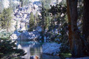 1986_07_25ca Yosemite Park (CA)