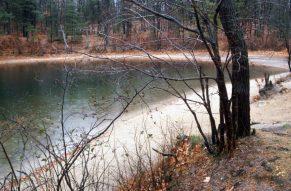 1988_11_17 AK 06 Walden Pond, bei Concord (MA)