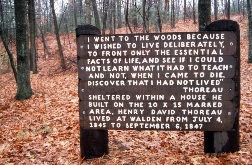 1988_11_17 Thoreau house site, Walden Pond