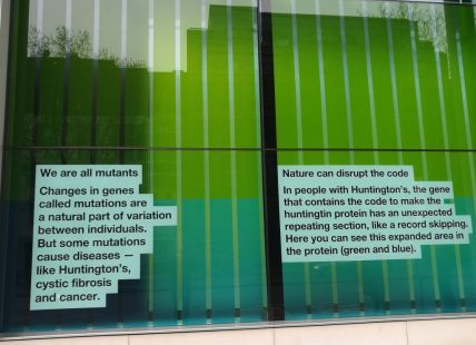 2018_12_30 London (UK): Wellcome Collection