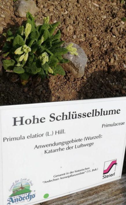 2019_04_07 Andechs Kräutergarten