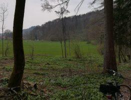 2019_04_13 Nussdorf: Winkelwiese