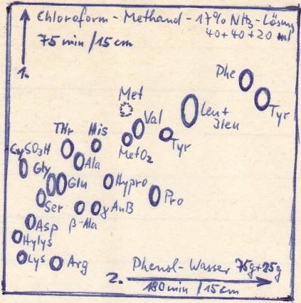 1969_05_05 Chromatographie Schema Aminosäuren