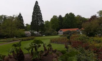 2019_05_08 Oldenburg Schlossgarten