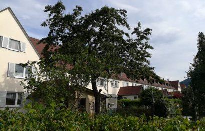 2019_06_21 Freiburg Gartenstadt