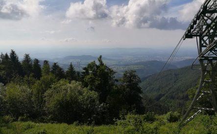 2019_06_23 Freiburg Blick vom Schauinsland