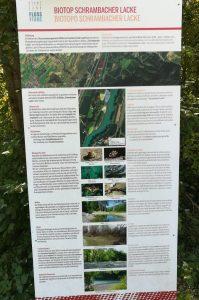 2019_09_15 Brixen (I), Biotop Schrambacher Lacke