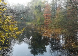2019_11_17 Hamburg Stadtpark