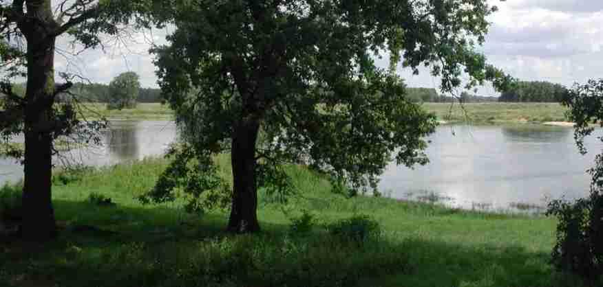 2005_08_05 Oder