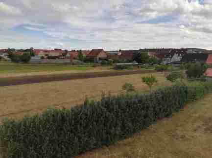 2020_07_26 Bamberg-Gärtnerstadt, Blick von Aussichtsplattform