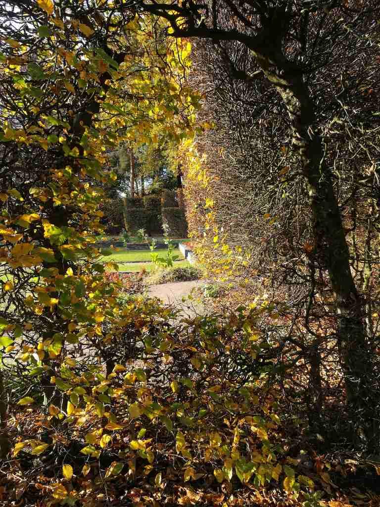 2020_11_07 114400 HH-Hamm: Hammer Park
