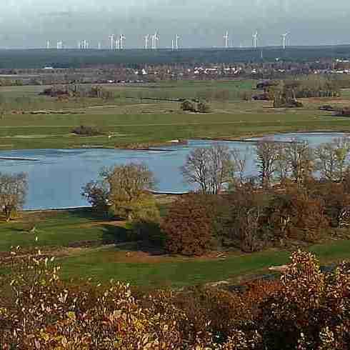 2020_11_15 Elbe unter dem Höhbeck