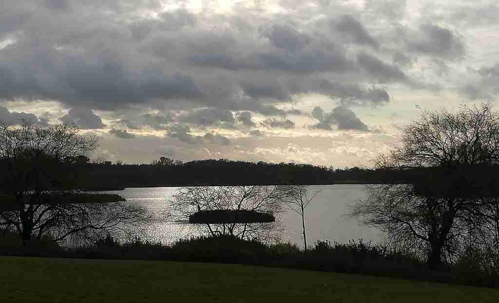 2020_11_22 HH-Billstedt: Öjendorfer See von W