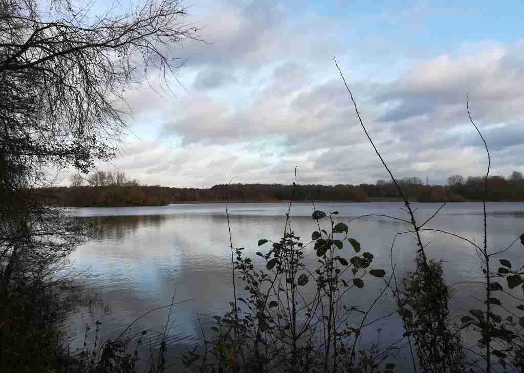 2020_11_22 HH-Billstedt: Öjendorfer See von N