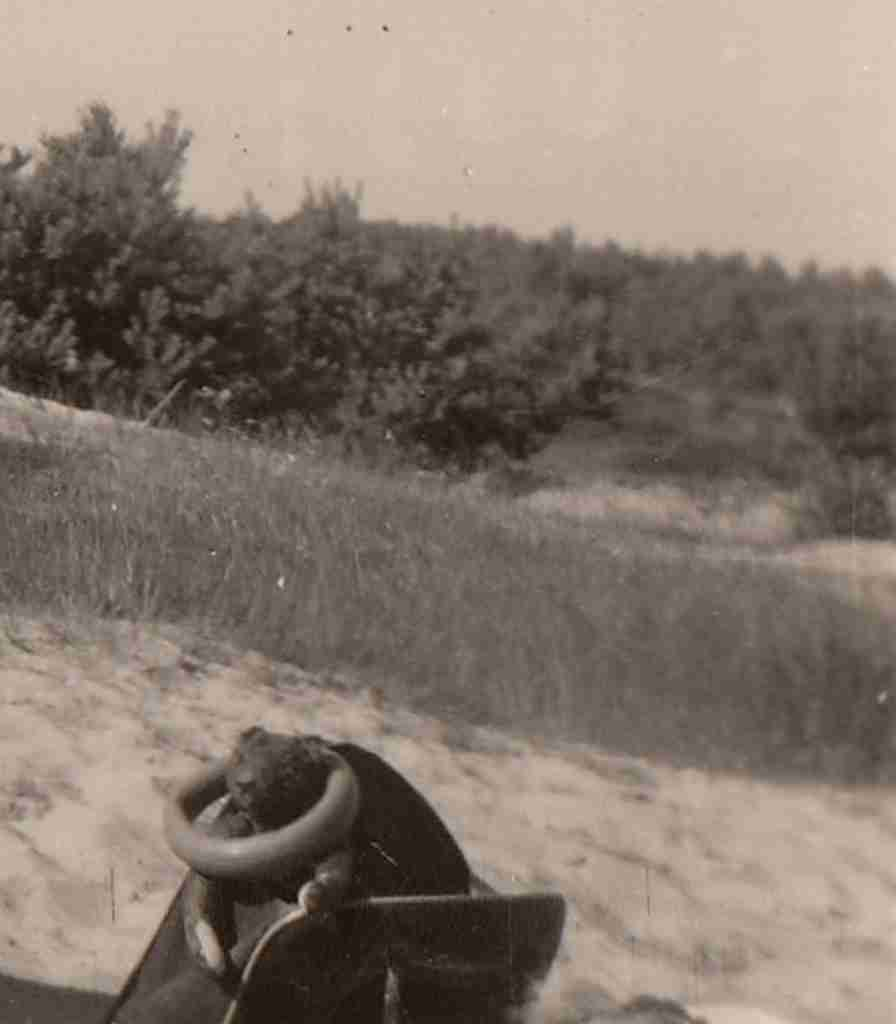 1951 Sommer - Osenberge 02 detail
