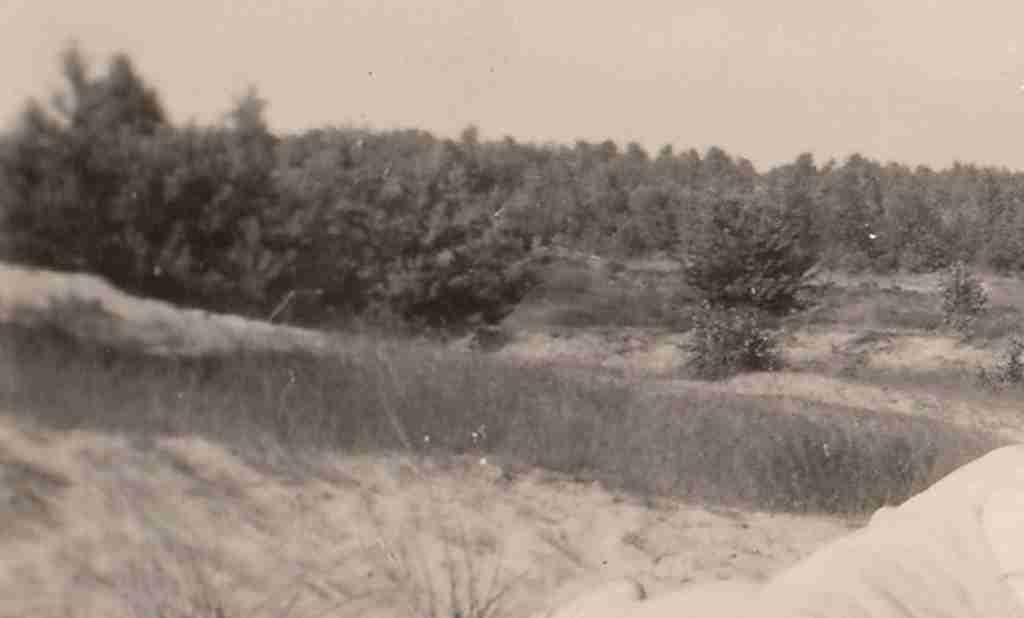 1951 Sommer - Osenberge 04 detail