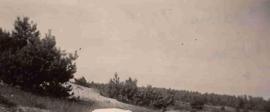 1951 Sommer - Osenberge 05 detail