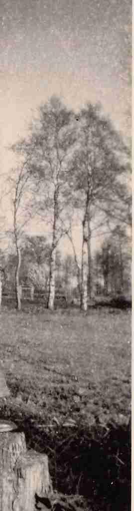 1952 Sommer - Ohmstede OL detail