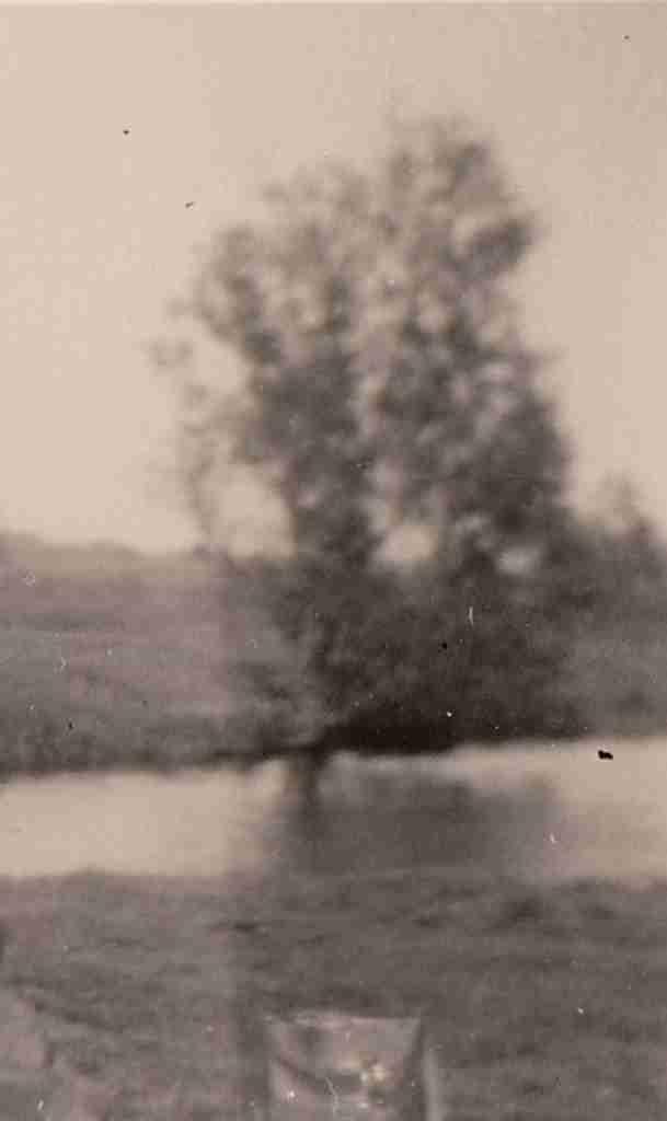 1953 Sommer - Hunteniederung Glahner Eck detail