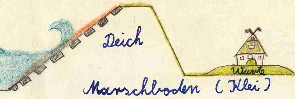 1957_05ca Heimatkunde - Marsch u Deich